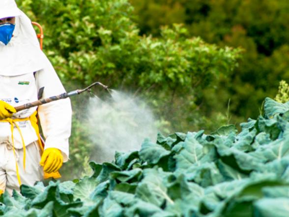 الأسمدة والمبيدات الزراعية
