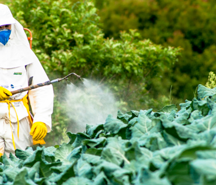 Fertilizers and pesticides agricultural